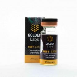 Golden Labs Testosterone...